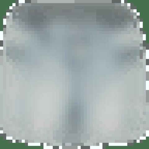 Romy Button Shorts