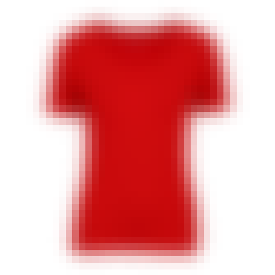 Diana Shirt