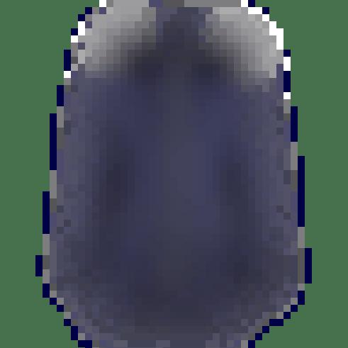 Gigi Coat