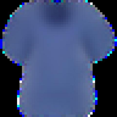 Diana New Shirt