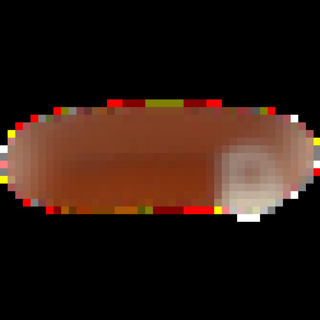 Petra Belt