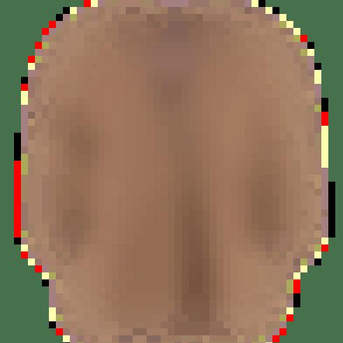 Mono Bluse